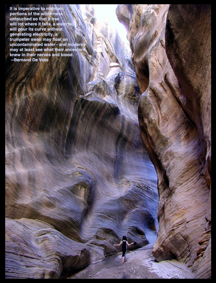 Grand Staircase-Escalante Ecard