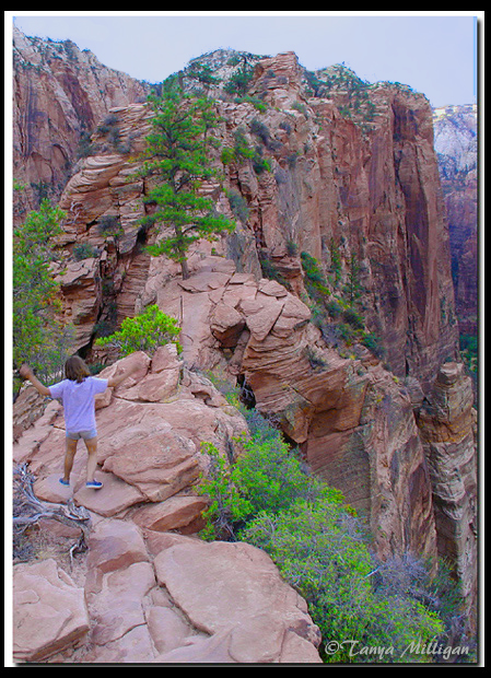 Angels Landing - Zion National Park